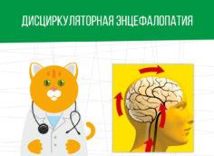 Дисциркуляторная энцефалопатия: какая категория годности?