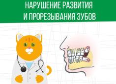 Берут ли в армию при нарушениях в развитии и прорезывании зубов