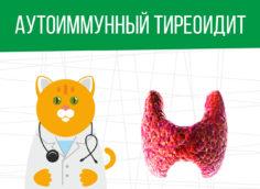 Аутоиммунный тиреоидит: какая категория годности?