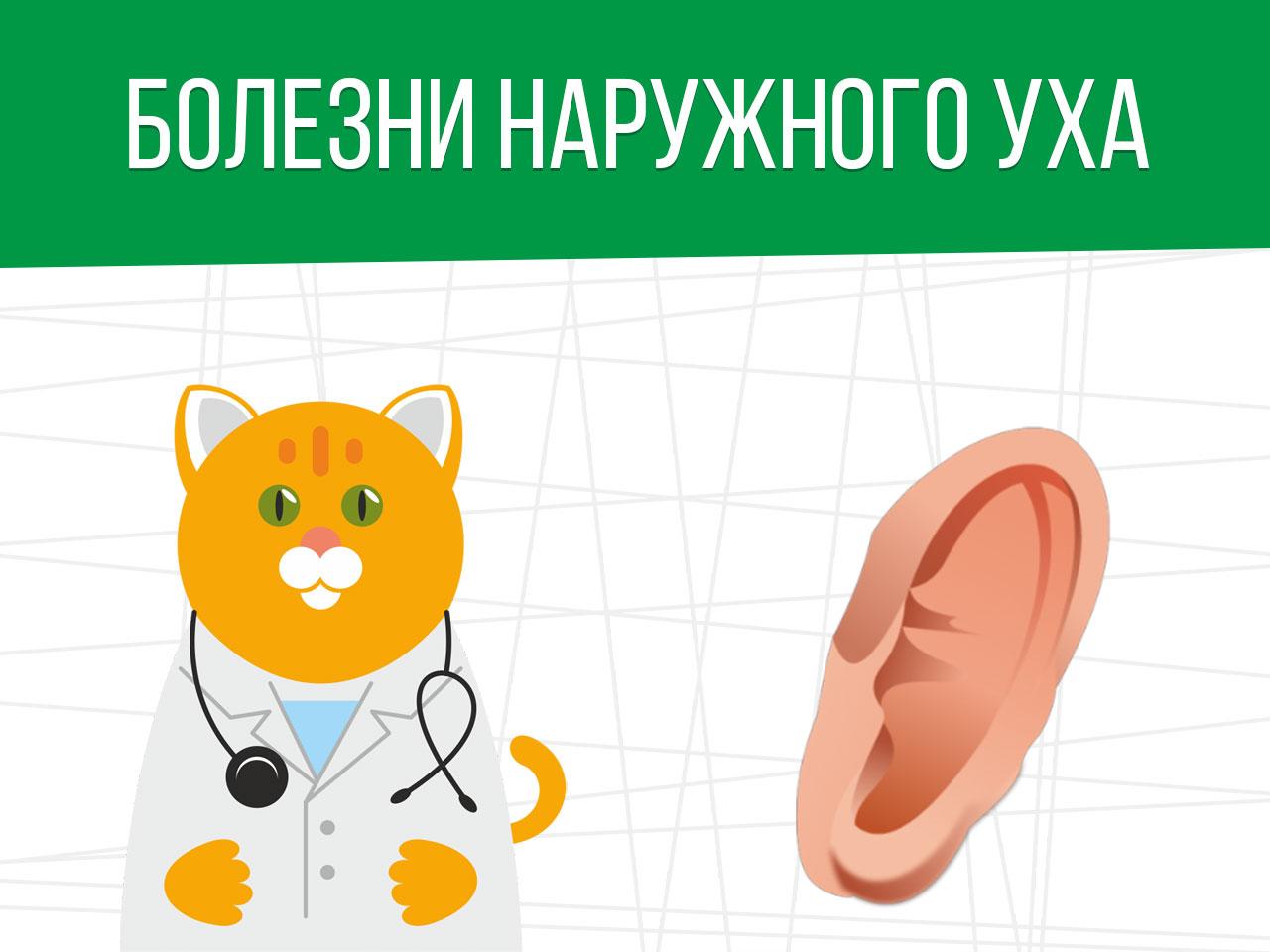 Болезни наружного уха: получение освобождения от армии
