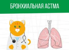 Бронхиальная астма: какая категория годности?