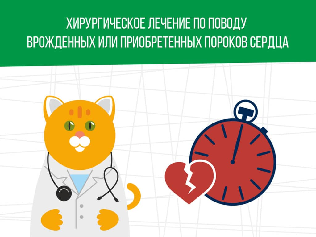 Хирургическое лечение по поводу врожденных или приобретенных пороков сердца: освобождение от службы в армии
