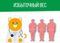 Избыточный вес: категория годности призывника