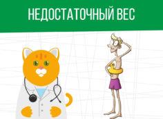 Недостаточный вес: категория годности призывника