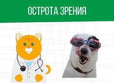 Острота зрения: категория годности призывника