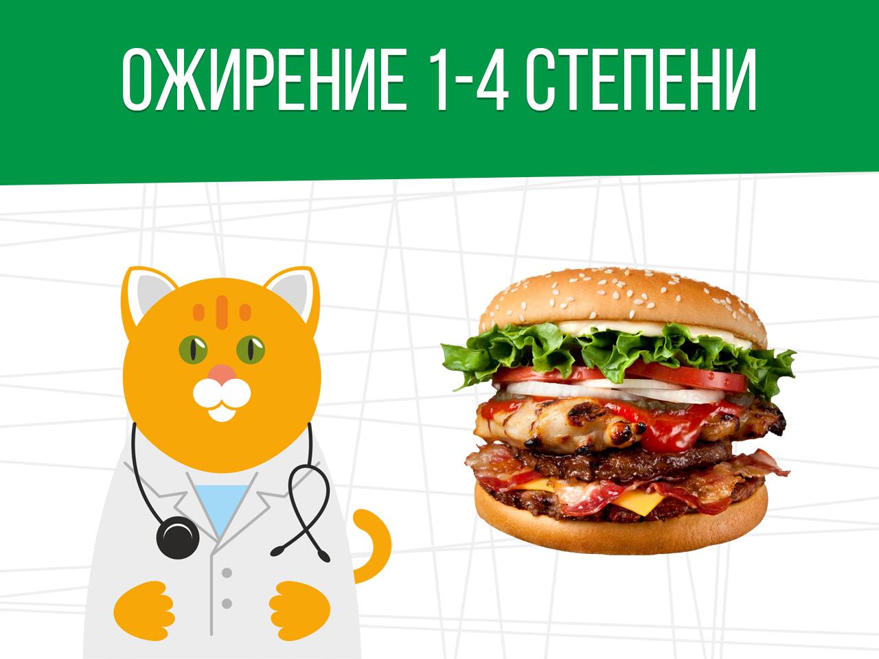Ожирение 1-4 степени: определяем категорию годности