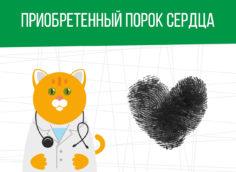 Приобретенный порок сердца: какая категория годности?