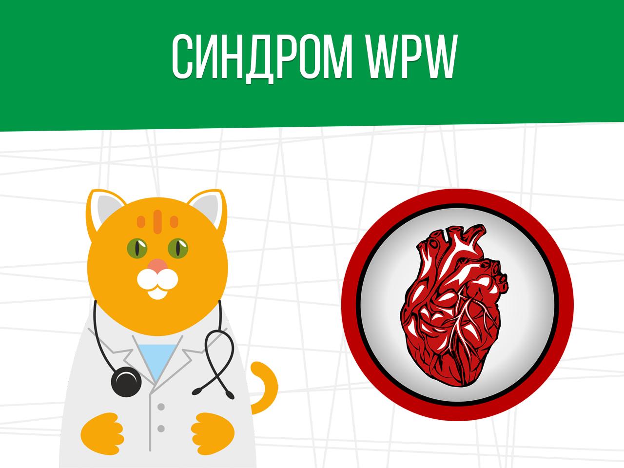Синдром WPW: категория годности призывника