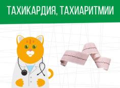 Тахикардия, тахиаритмия: категория годности призывника
