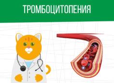 Тромбоцитопения: какая категория годности?