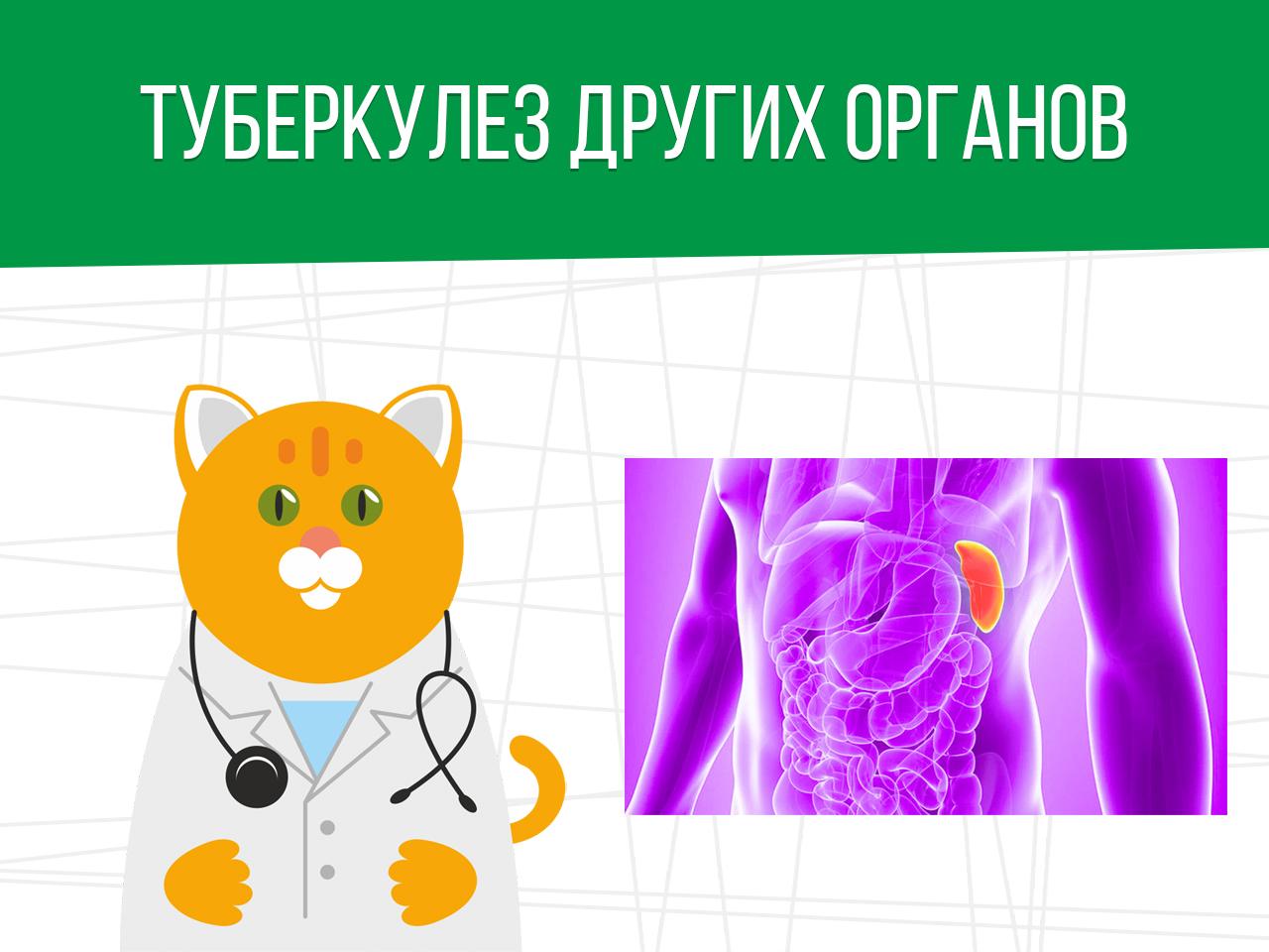 Туберкулез других органов: категория годности призывника