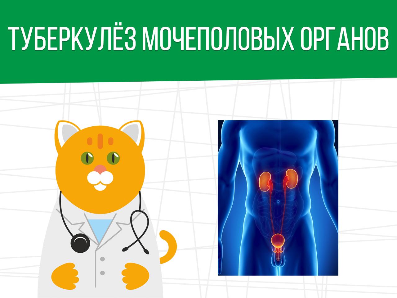 Туберкулёз мочеполовых органов: категория годности призывника