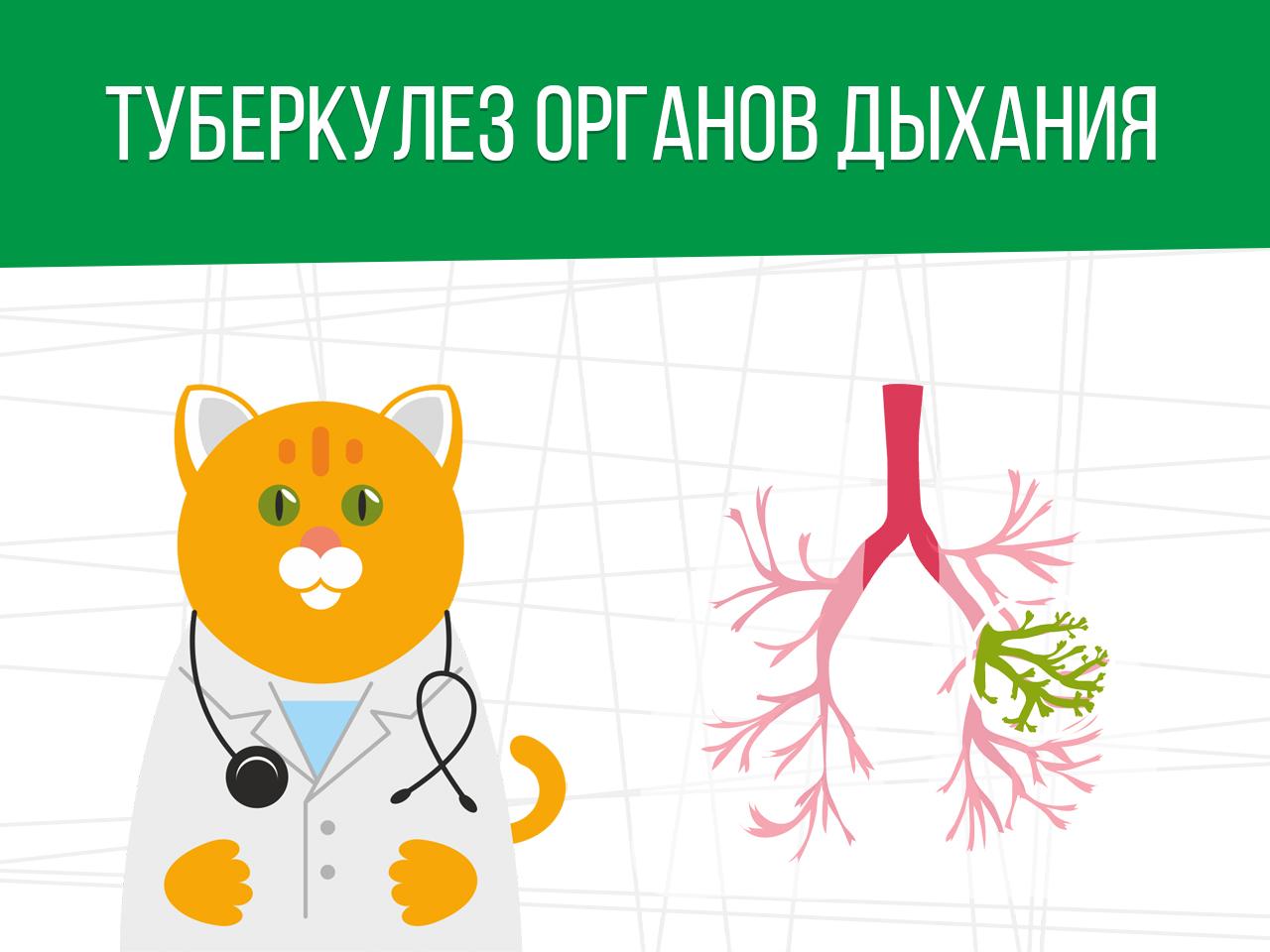 Туберкулез органов дыхания: берут ли в армию?