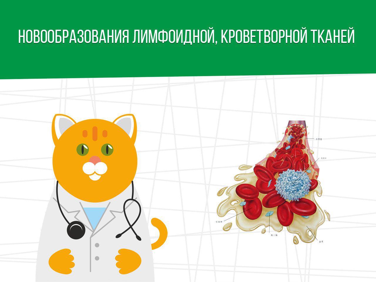 Новообразования лимфоидной, кроветворной тканей и армия