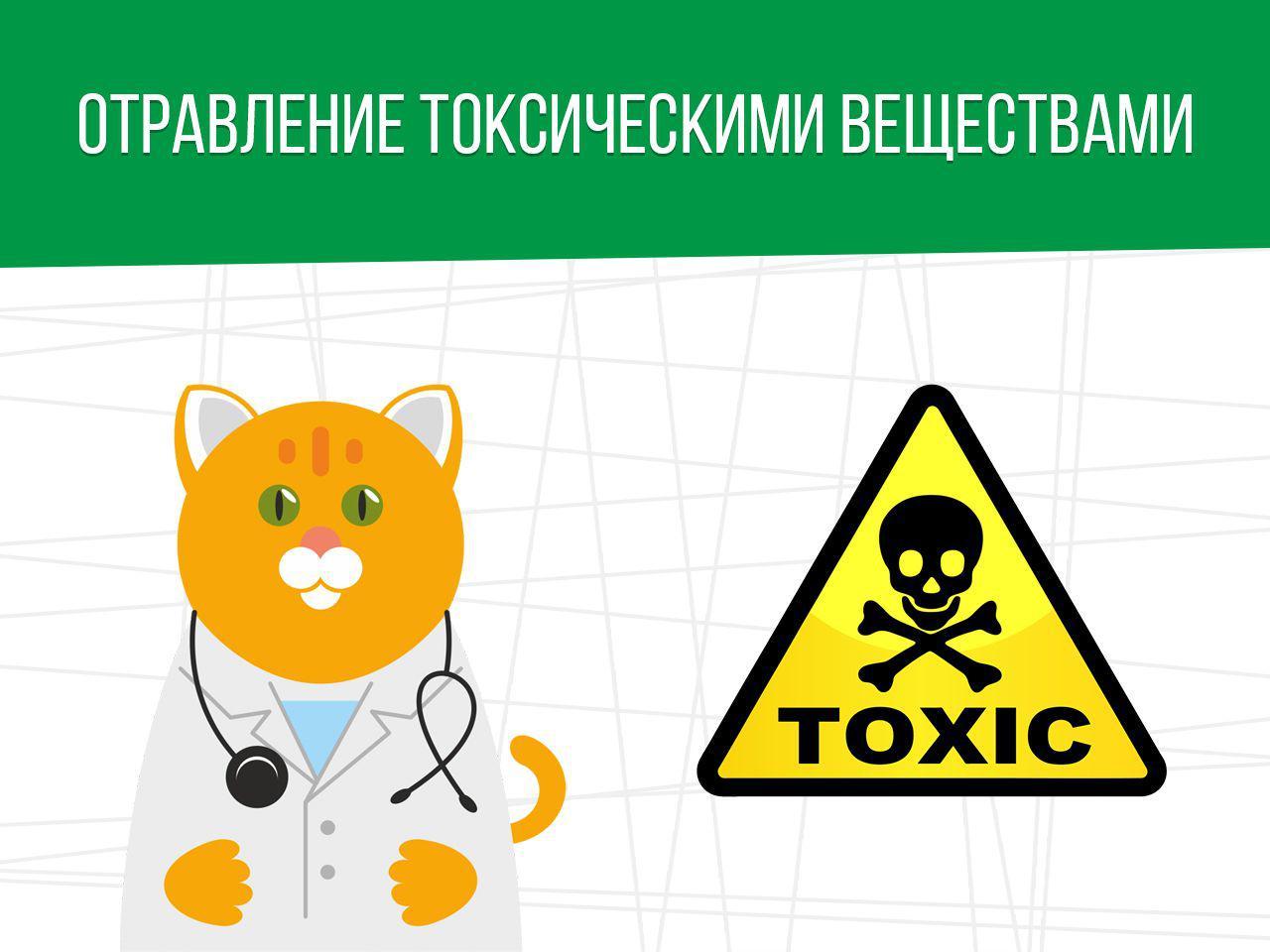 Отравление токсическими веществами: призыв на службу