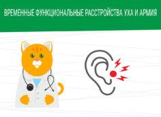 Временные функциональные расстройства уха и армия